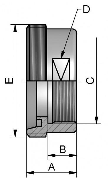 """Aufschraub Gewindestutzen, AISI 316L bl., DN 10 x IG 3/8"""", SW 19mm"""