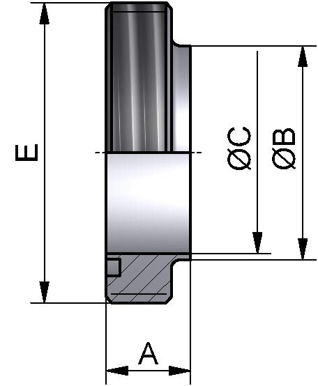 DS Gewindestutzen-S, AISI 316L bl., DN 25
